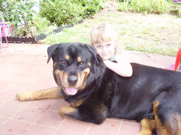 Happy Tails Rescue Association is a Rottweiler Rescue